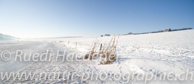 Lac des Taillères gefroren
