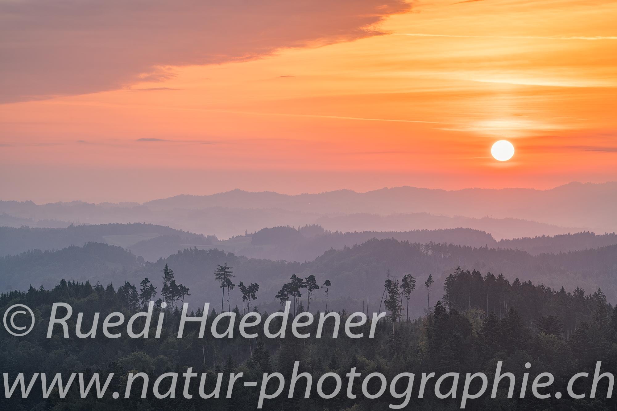 Sonnenaufgang auf dem Bantiger