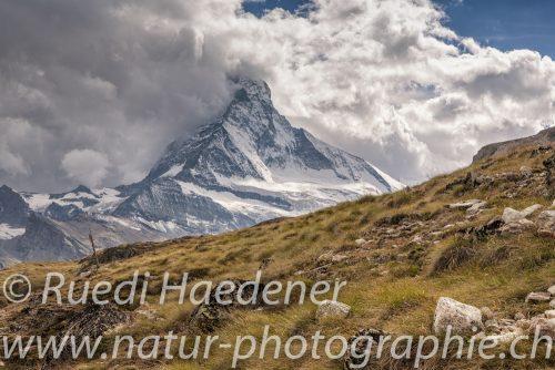 Matterhorn Nordwand vom Hohbalmen