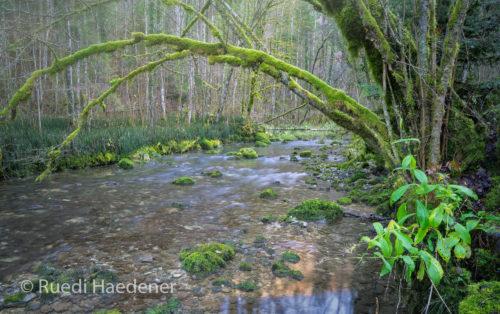 Sorne im Gorges du Pichoux