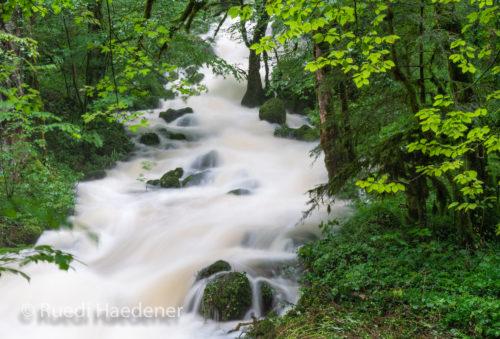 Zufluss zur Sorne im Gorges du Pichoux