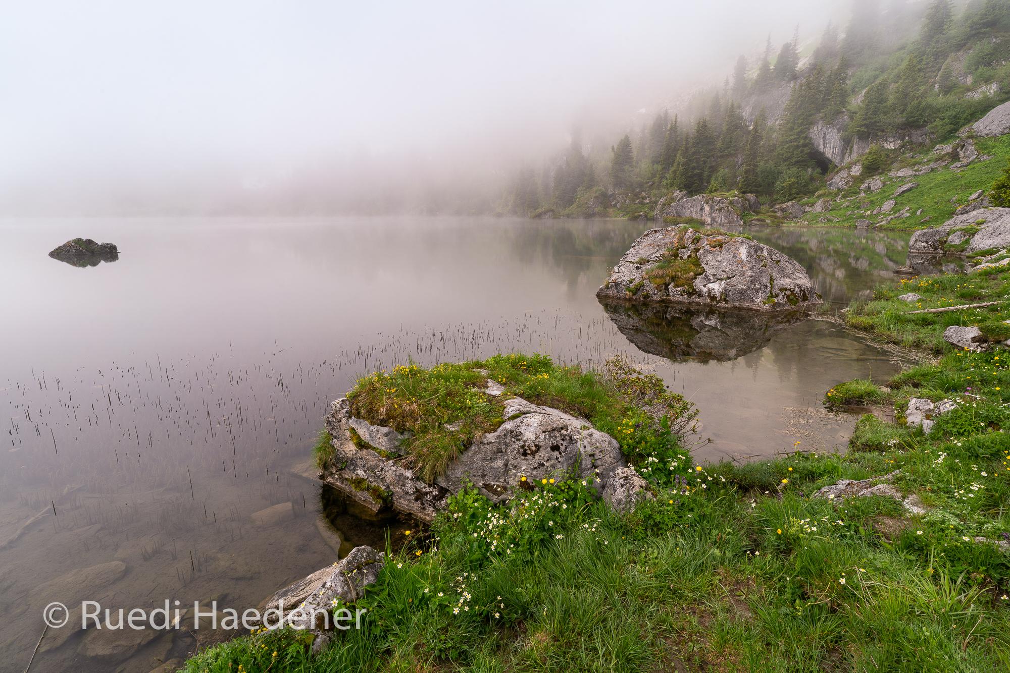 Seebergsee im Nebel