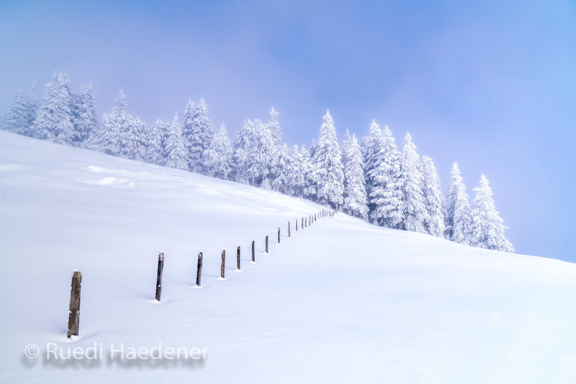Gantrisch im Winter