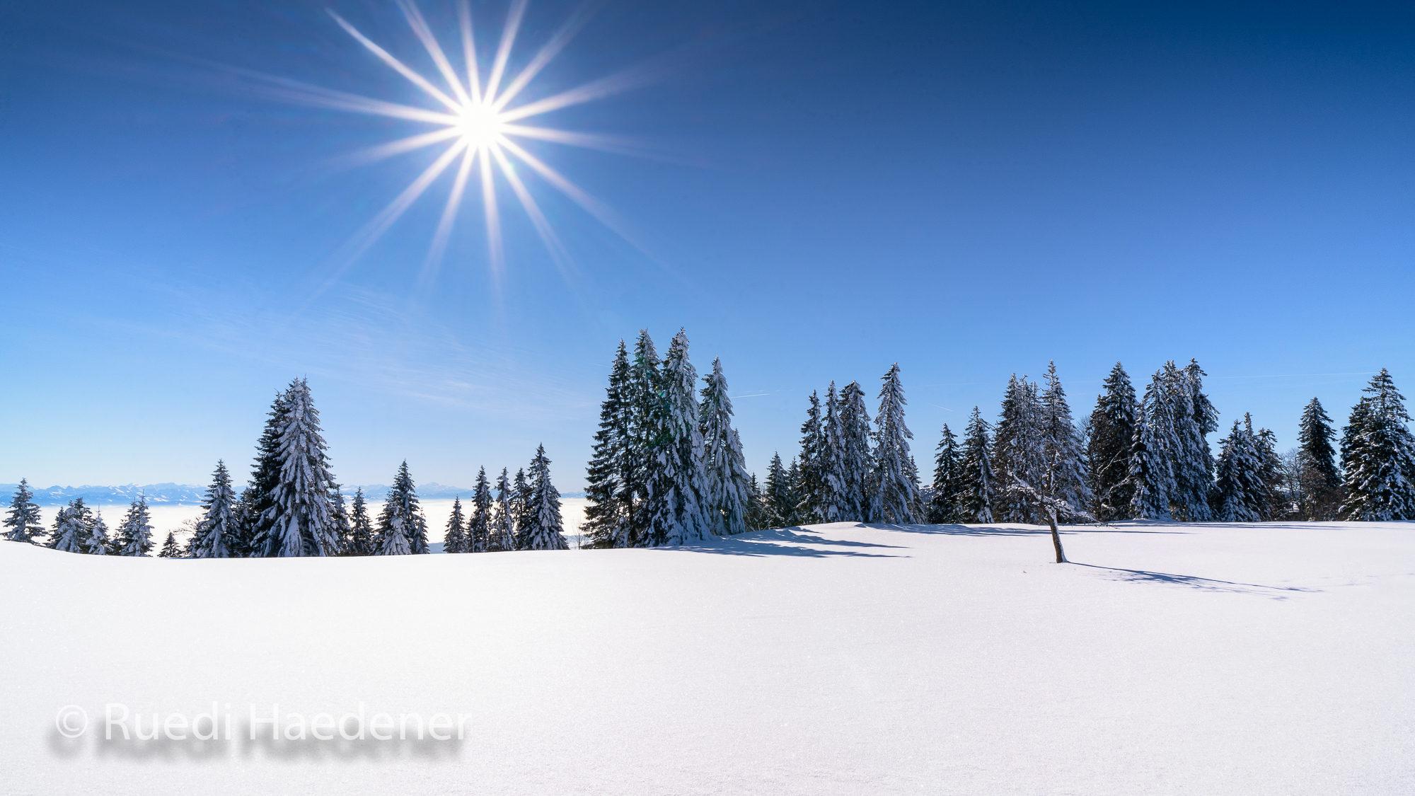 Schnee im Jura mit Nebelmeer